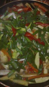 legume julien la tigaie